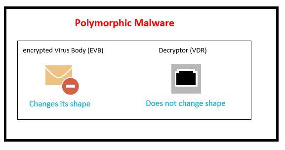 Polymorphic Malware_232