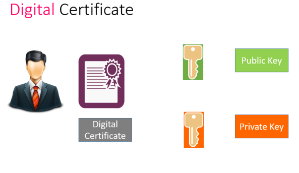 Digital Certificate Picture