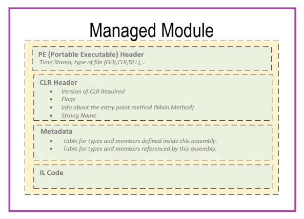 Managed Module